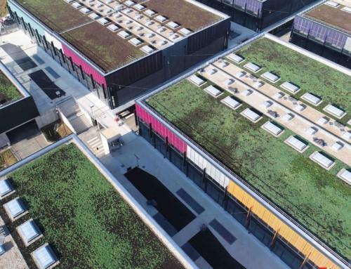 Toitures végétalisées : une utilisation innovante des ensembles routiers.